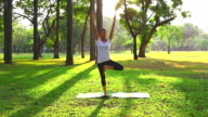 HD:Women practicing of yoga outdoors. video