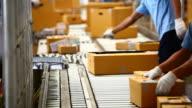HD:Worker sorting carton box on conveyor rollers. video