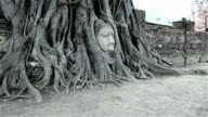 Head of Sandstone Buddha in root video