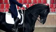 Headless Horseman video