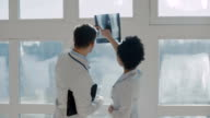 Healthcare, medical: Doctors met in a clinic or hospital, discussing and looking x-ray. video