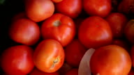 healthy food-tomato video