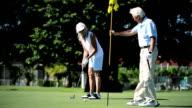 Healthy Seniors Enjoying Golf video