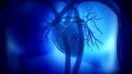 Heart beat concept in loop video