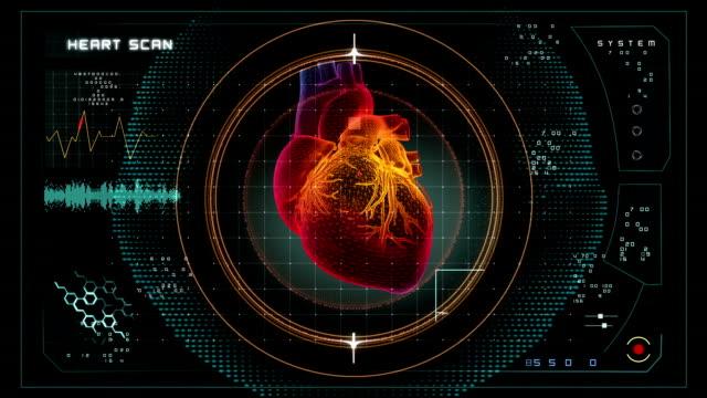 Heart Scan data interface video