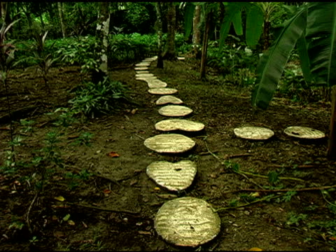 Heart Shaped Stone Foot Path in Chiapas Mexico Jungle video