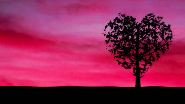 Heart Shaped Tree Sways Gently in Breeze Against Pink Sky video