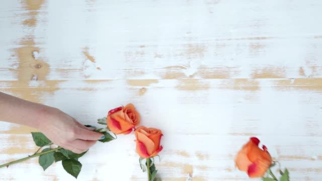 heartshape of orange roses video