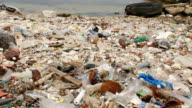 heavily polluted coast video