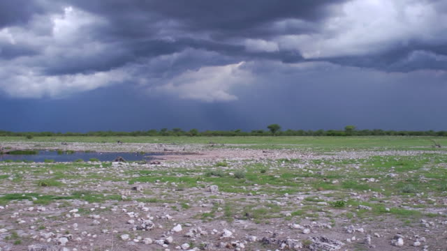 Heavy Clouds over Etosha Nationalpark video