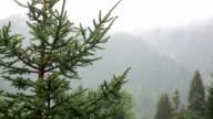 Heavy rain in the alps video