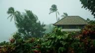 Heavy Tropical Rain During Monsoon Season in Thailand video