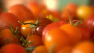 Heirloom Tomatoes video