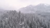 Helicopter View of Fog Haze on White Mountain Tops in Winter Snow Covered Forest video