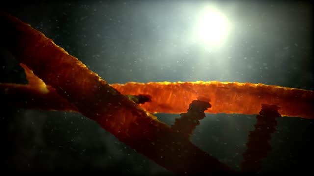 DNA helix video