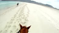 Helmet mounted GoPro shot while horse riding down pristine Long Beach in Noordhoek, Cape Town, South Africa video