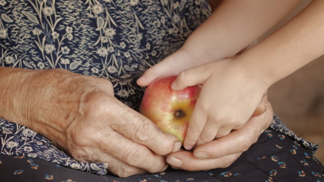 A Helping Hand-Little Girl Share an Apple  with Grandmother. Detail of a Child Hands and Senior Woman Hands. video