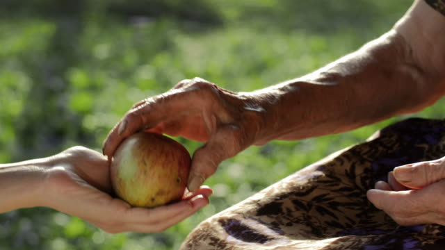 A Helping Hand-Little Girl Share an Apple  with Grandmother video