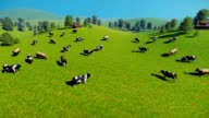 Herd of cows on a pasture aerial view video