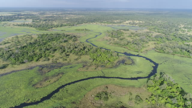 High aerial view of the waterways and lagoons of the Okavango Delta video
