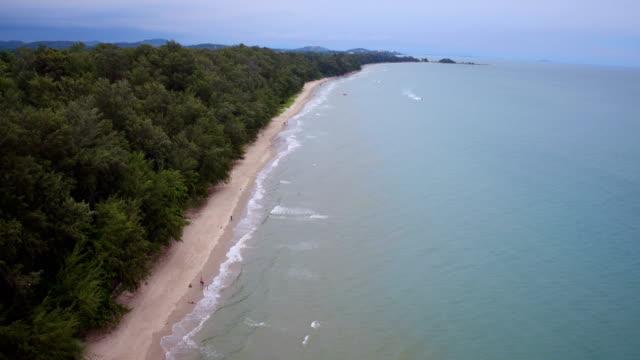 High angle beach video