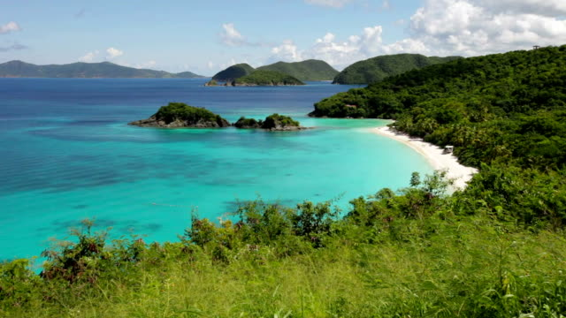 high angle video of Trunk Bay, St.John, US Virgin Islands video