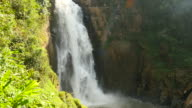 High Cliff Waterfalls in Deep Forests video