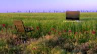 High definition plasma TV on green meadow video