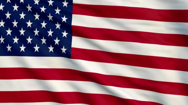 High detail flag uf USA video