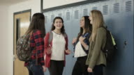 High school girls bullying another student at school video