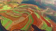 High-altitude aerial Rice paddy,Yunnan,China video