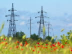 High-voltage lines and poppies in foreground. video