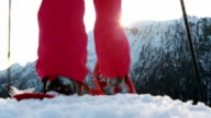 Hiker reaches mountain top, arm raised video