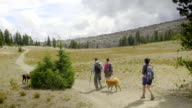 Hikers and their pets walk away from the camera video