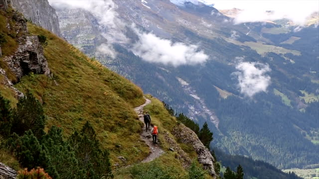 Hikers ascend along path through mountain meadow video