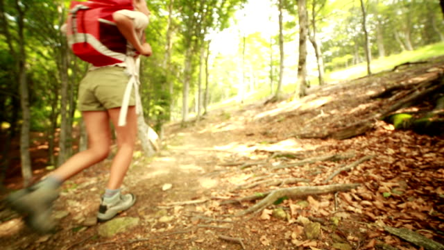 Hikers on mountain trail video