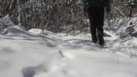 Hiking Across Australian Snow video