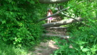 Hiking in Forest video