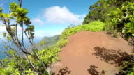 FPV: Hiking on the mountain edge with stunning views of jungle valley and ocean video