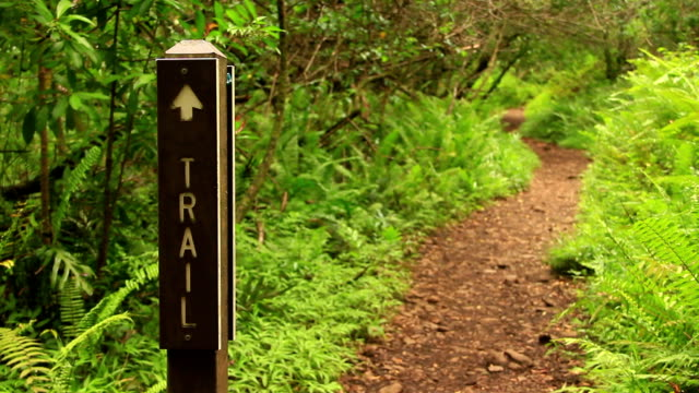 Hiking Trail Sign video