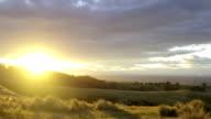 Hillside Sunset Over Tussocks video