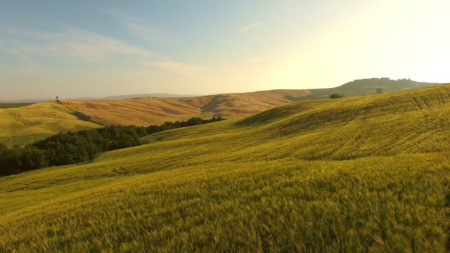 AERIAL Hilly countryside in Tuscany video