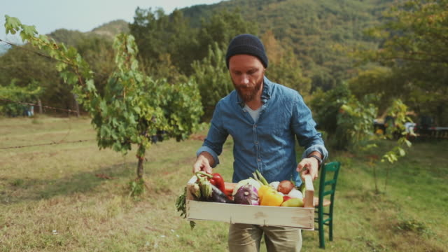 Hipster man with grocery box video