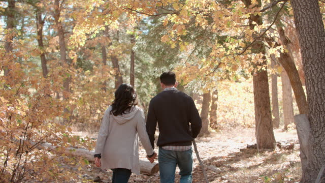 Hispanic couple hold hands walking in a forest, back view video