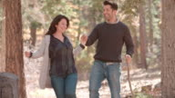 Hispanic couple walk in forest holding hands, close up video