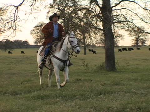 Hispanic Cowboy Rides White Horse on Texas Ranch 6 video