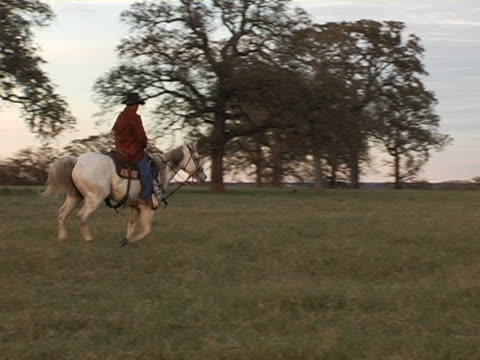 Hispanic Cowboy Rides White Horse on Texas Ranch video