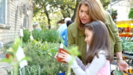 Hispanic mother and young daughter examine different types of herbs at local farmer's market or garden center video