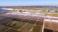 Historical salt pans in Aveiro, Portugal aerial view video