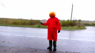 Hitchhiking Pumpkinhead stay under rain with cardboard sign, ask to stop rain video